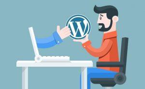 por que wordpress